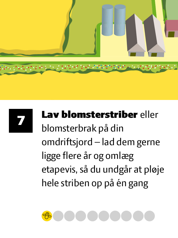 7 Lav blomsterstriber